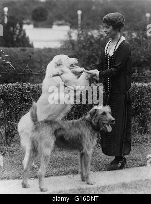 Grace Coolidge with two dogs, holding the front paws of one. Grace Anna Goodhue Coolidge (January 3, 1879 - July - Stock Photo