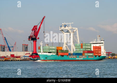 Container ship and cranes in Wiltonhaven, Schiedam, Port of Rotterdam, the Netherlands - Stock Photo