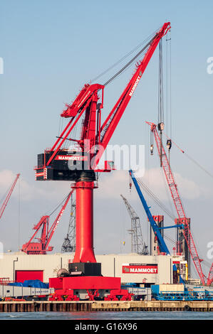 Cranes in Wiltonhaven, Schiedam, Port of Rotterdam, the Netherlands - Stock Photo