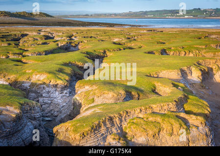 The Skern - Northam Burrows - Stock Photo