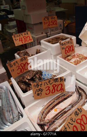 Multiple types of seafood with price tag at Japan fish market - Stock Photo