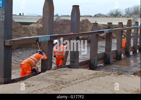 Workmen rebuilding the groins on Dawlish beach in South Devon UK. This area has had big coastal erosion problems - Stock Photo
