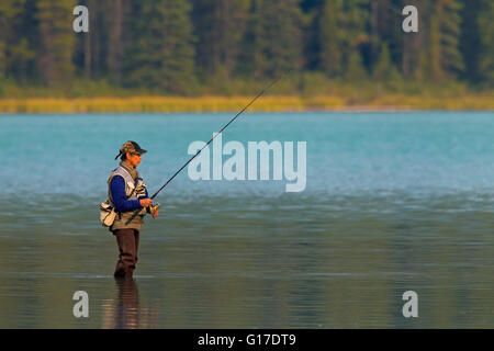 Fly angler fly fishing in lake, Banff National Park, Alberta, Rocky Mountains, Canada - Stock Photo