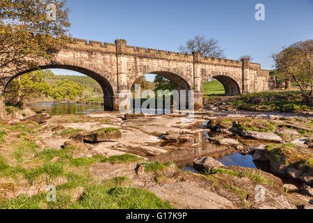 Barden Bridge over the River Wharfe, Bolton Abbey Estate, Yorkshire Dales National Park, North Yorkshire, England, - Stock Photo