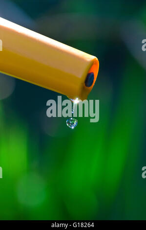 ... Single Clear Pure Water Droplet Falling From Garden Hose In Sunlit  Summer Garden   Stock Photo