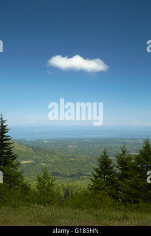 Elevated landscape with distant forests and blue sky, Olympic National Park, Washington State, USA - Stock Photo