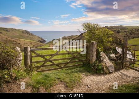 View over a farm gate towards Soar Mill Cove, Devon, England. - Stock Photo