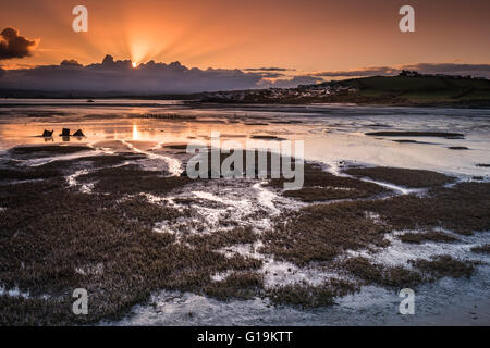 Northam Burrows Daybreak - Stock Photo