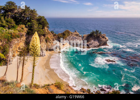 Beach, Falls and flowers in Big Sur, California - Stock Photo