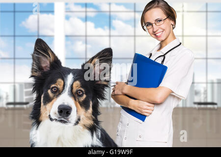 Female vet with a beautiful dog in the veterinarian clinic - Stock Photo