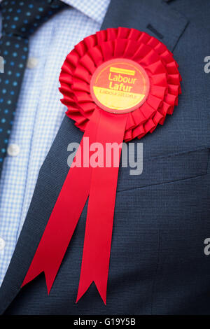 Red Welsh Labour rosette worn by a Welsh Labour party activist. - Stock Photo
