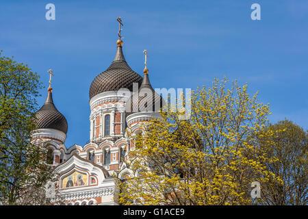 Alexander Nevsky Cathedral In Springtime - Stock Photo