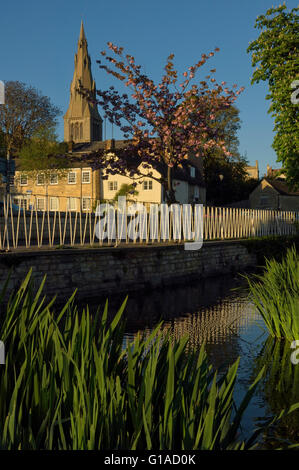 St Mary's Church viewed from the River Welland. Stamford. Lincolnshire. England. UK - Stock Photo