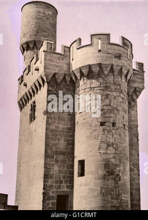 Palacio de los Reyes de Navarra de Olite (Palace of the Kings of Navarre of Olite) Castle of Olite; built during - Stock Photo