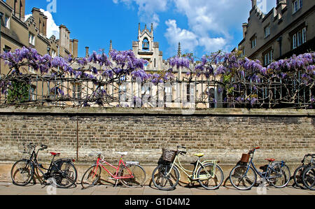 Bikes against the wall outside Sidney Sussex College, Cambridge University - Stock Photo