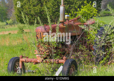 old red farm tractor sitting in an overgrown field - Stock Photo