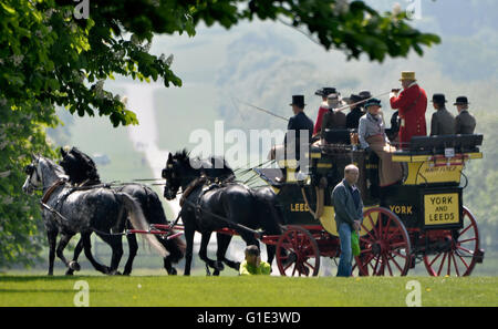 Windsor Castle, UK. 13th May, 2016. The Royal Windsor Horse Show at Home Park Private Windsor Castle UK The Coaching - Stock Photo