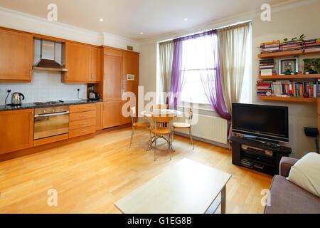 Belsize Lane, Hampstead. Open plan living room and kitchen with wood floors and large window. - Stock Photo