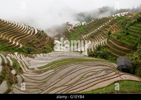 View of Longji rice terraces in Guangxi province at raining time, China - Stock Photo