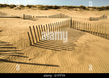 Sag Main Beach in late afternoon with beach fencing - Stock Photo