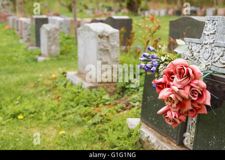 Flowers on a tombstone in a cemetary with hundreds of tombstones in the background - Stock Photo