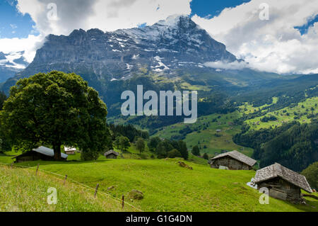 Swiss Alps - snow capped mountains and deep valleys, stunning view, breath-taking panorama - Stock Photo