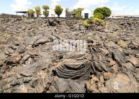 House standing in solidified pahoehoe or ropey lava field, Tahiche, Lanzarote, Canary Islands, Spain - Stock Photo