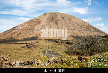 Volcano cone and black volcanic soil farmland, near Tinajo, Lanzarote, Canary Islands, Spain - Montana Tinache - Stock Photo