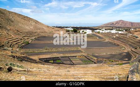 Volcano crater and black volcanic soil farmland, near Tinajo, Lanzarote, Canary Islands, Spain - Stock Photo