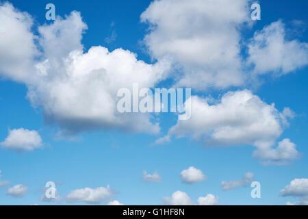 Cumulonimbus cloud formations against a bright blue sky. Cambridgeshire. UK. - Stock Photo