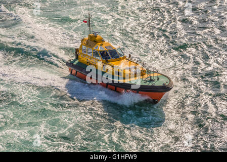 A Port of Sydney pilot boat guiding a cruise ship out of the Sydney Harbour - Stock Photo