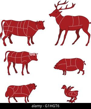 vector illustration of Diagram Guide for Cutting Meat