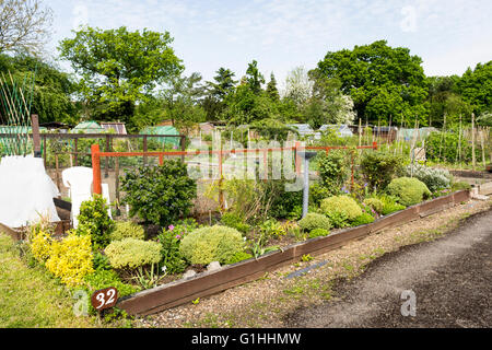 Well tended allotment garden in springtime. A plot of land for families to grow vegetables for personal use. - Stock Photo