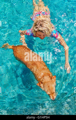 Funny photo of sunbathing woman playing with dog and training dog puppy in swimming pool with blue water. - Stock Photo