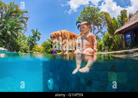 Funny underwater photo of little baby and dog swimmig in blue outdoor swimming pool. - Stock Photo