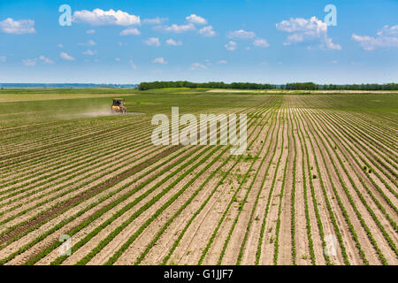 Spraying soybean field at spring. - Stock Photo