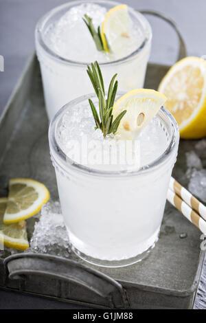 Lemon rosemary cocktail on a tray - Stock Photo