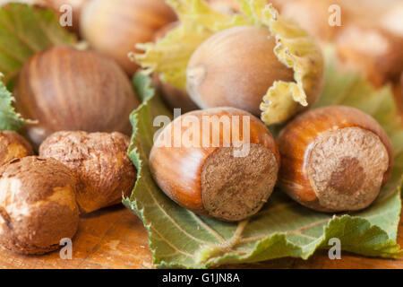Hazelnuts fruits on wooden table top - Stock Photo