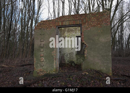 Look through the remains of a ruined house in the forest. - Stock Photo