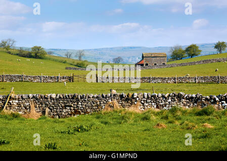 Malham, Craven, North Yorkshire, England, UK - Stock Photo