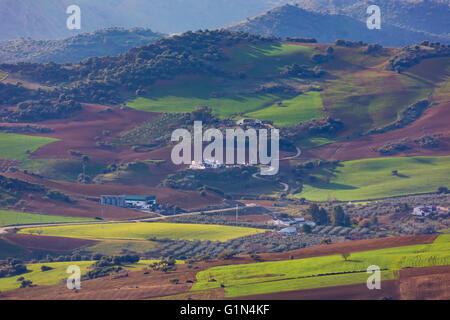 near Villanueva de la Concepcion, Malaga Province, Andalusia, southern Spain.  Agriculture.  Crops growing and fallow - Stock Photo