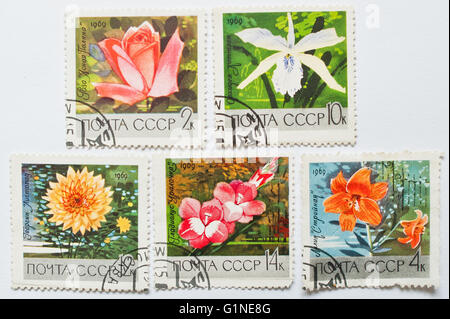 UZHGOROD, UKRAINE - CIRCA MAY, 2016: Collection of postage stamps printed in USSR, shows different flowers, circa - Stock Photo
