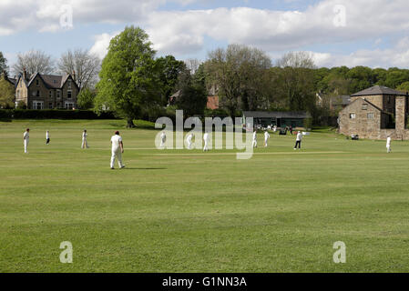 Local Cricket match in Millhouses Park Sheffield England - Stock Photo