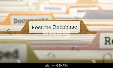 background resume database concept folders in catalog stock photo