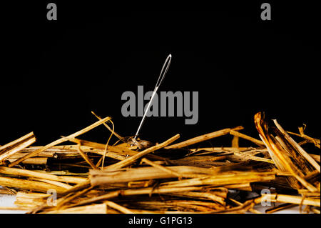 Looking for lost  needle in haystack. Searching. Lost and found. - Stock Photo