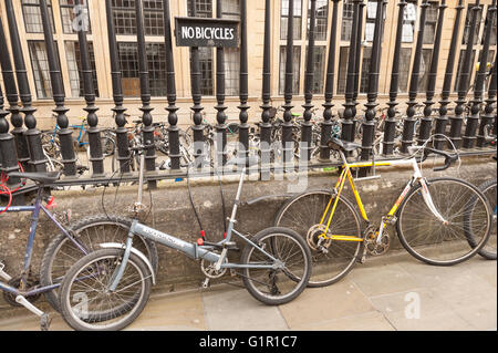Blatant disrespect warning sign no bicycles ignored with row of bikes chained up to steel railings on street pavement - Stock Photo
