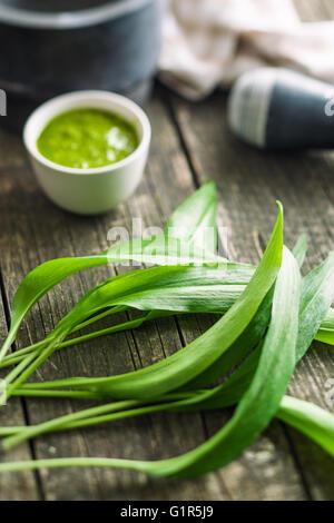 Fresh ramsons leaves. Wild garlic leaves. Healthy vegetable. - Stock Photo