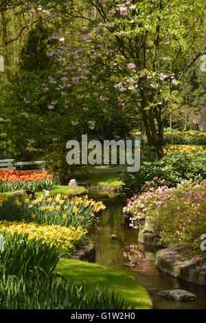 One of the show gardens at the Keukenhof, Holland - Stock Photo