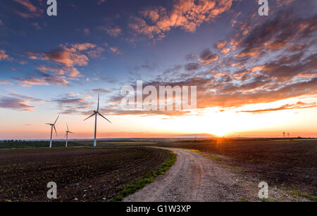 Wind turbines with power line in the sunset! - Stock Photo