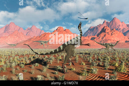 Pelecanimimus Dinosaurs , Trying To Catch A Giant Dragonflies - Stock Photo